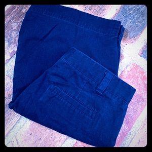 IZOD Shorts 14 1/2 Plus